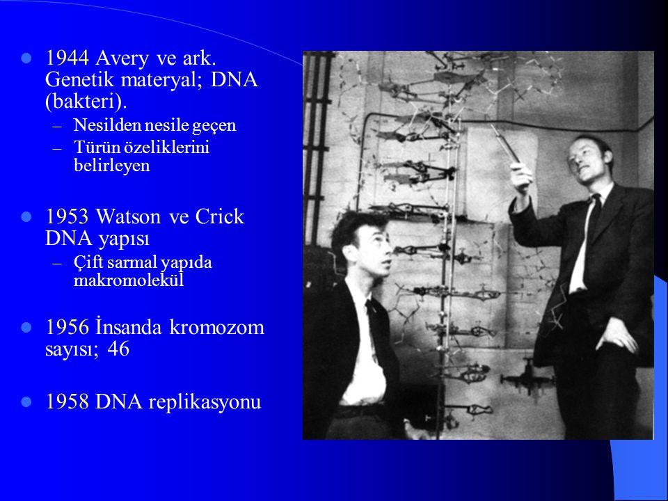 1944 Avery ve ark. Genetik materyal; DNA (bakteri). – Nesilden nesile geçen – Türün özeliklerini belirleyen 1953 Watson ve Crick DNA yapısı – Çift sar