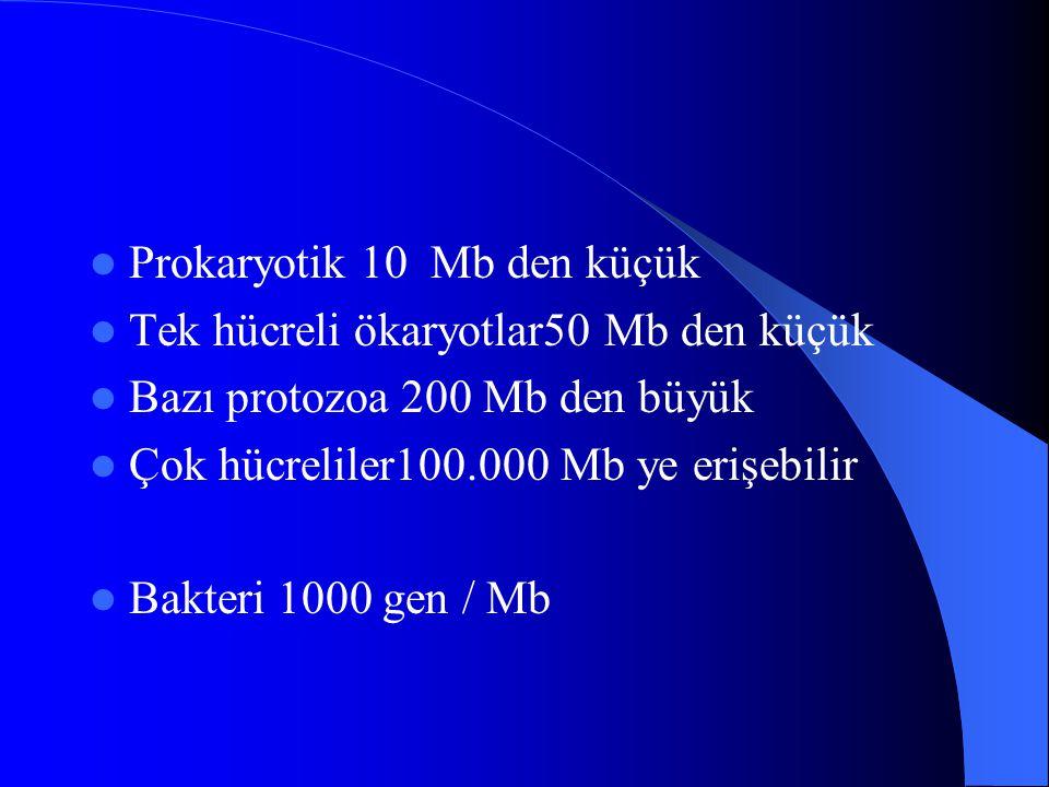 Prokaryotik 10 Mb den küçük Tek hücreli ökaryotlar50 Mb den küçük Bazı protozoa 200 Mb den büyük Çok hücreliler100.000 Mb ye erişebilir Bakteri 1000 g