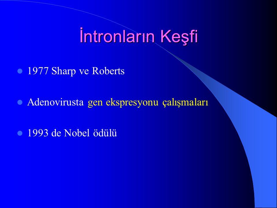 İntronların Keşfi 1977 Sharp ve Roberts Adenovirusta gen ekspresyonu çalışmaları 1993 de Nobel ödülü