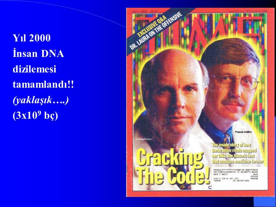 Yıl 2000 İnsan DNA dizilemesi tamamlandı!! (yaklaşık….) (3x10 9 bç)