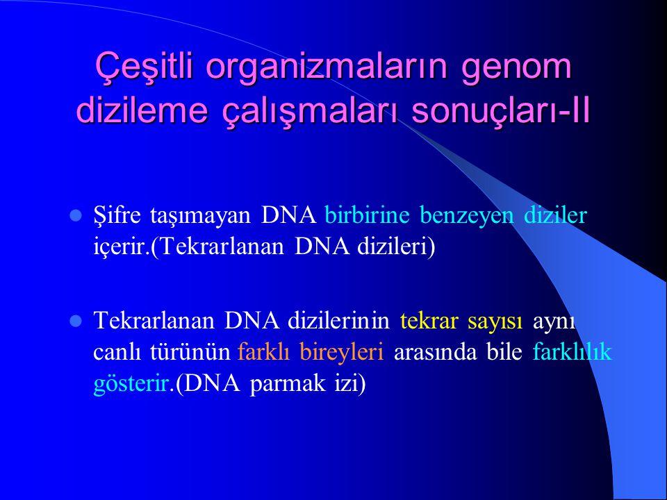Çeşitli organizmaların genom dizileme çalışmaları sonuçları-II Şifre taşımayan DNA birbirine benzeyen diziler içerir.(Tekrarlanan DNA dizileri) Tekrar