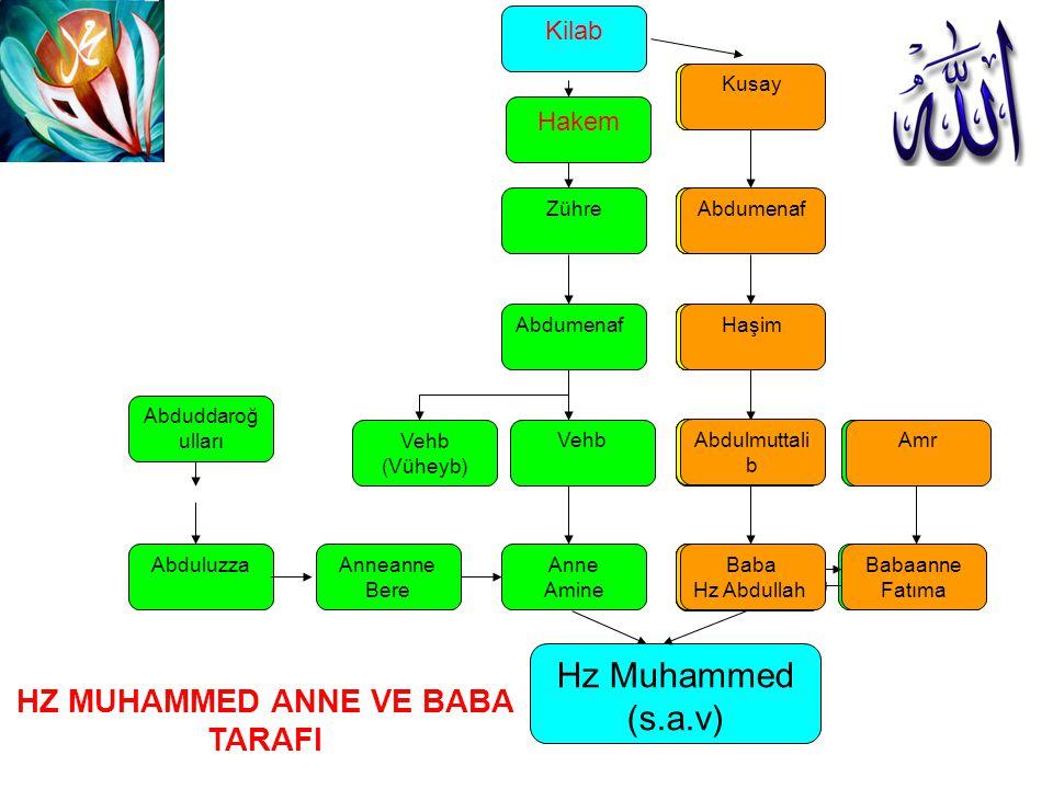 Abdulmuttali b Baba Hz Abdullah Hz Muhammed (s.a.v) Anne Amine HZ MUHAMMED ANNE VE BABA TARAFI Vehb Abdumenaf Zühre Haşim Abdumenaf Kusay Hakem Kilab