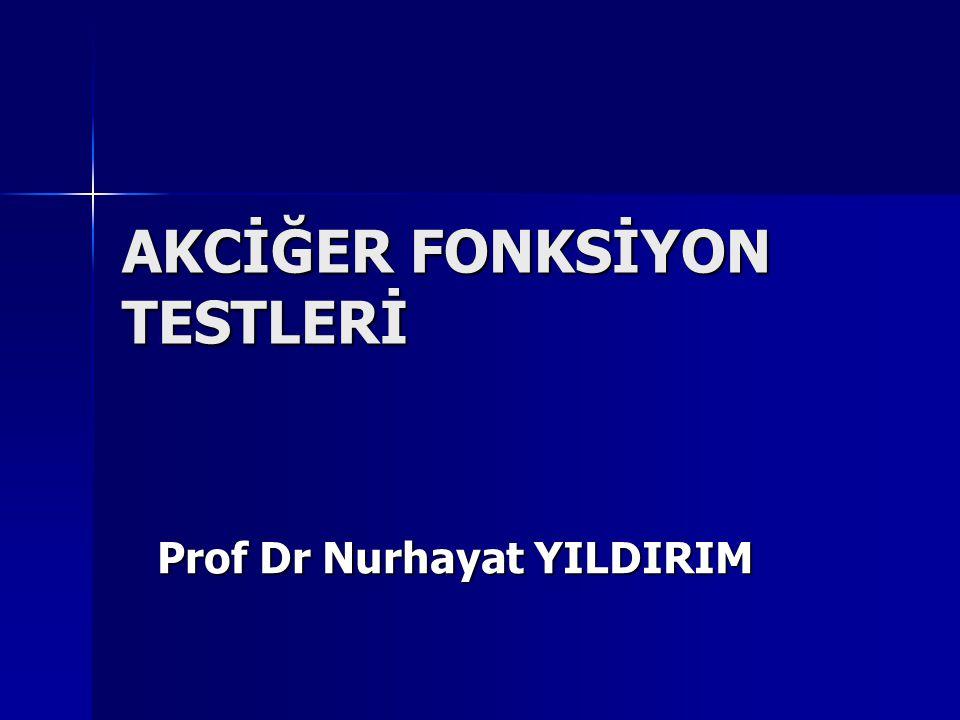 AKCİĞER FONKSİYON TESTLERİ Prof Dr Nurhayat YILDIRIM