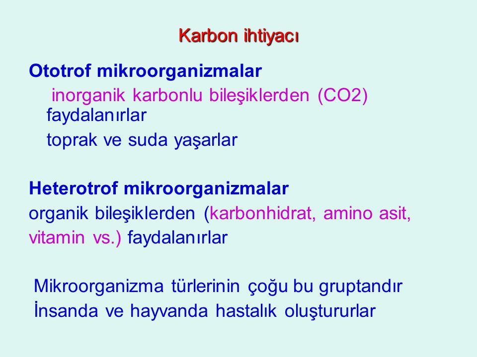 Karbon ihtiyacı Ototrof mikroorganizmalar inorganik karbonlu bileşiklerden (CO2) faydalanırlar toprak ve suda yaşarlar Heterotrof mikroorganizmalar or