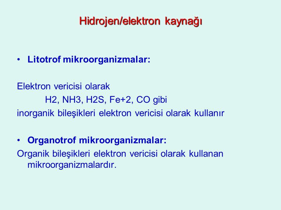 Hidrojen/elektron kaynağı Litotrof mikroorganizmalar: Elektron vericisi olarak H2, NH3, H2S, Fe+2, CO gibi inorganik bileşikleri elektron vericisi ola