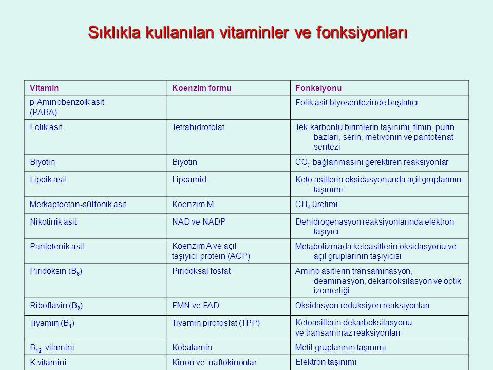 Sıklıkla kullanılan vitaminler ve fonksiyonları VitaminKoenzim formuFonksiyonu p-Aminobenzoik asit (PABA) Folik asit biyosentezinde başlatıcı Folik as