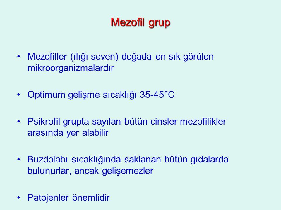 Mezofil grup Mezofiller (ılığı seven) doğada en sık görülen mikroorganizmalardır Optimum gelişme sıcaklığı 35-45°C Psikrofil grupta sayılan bütün cins
