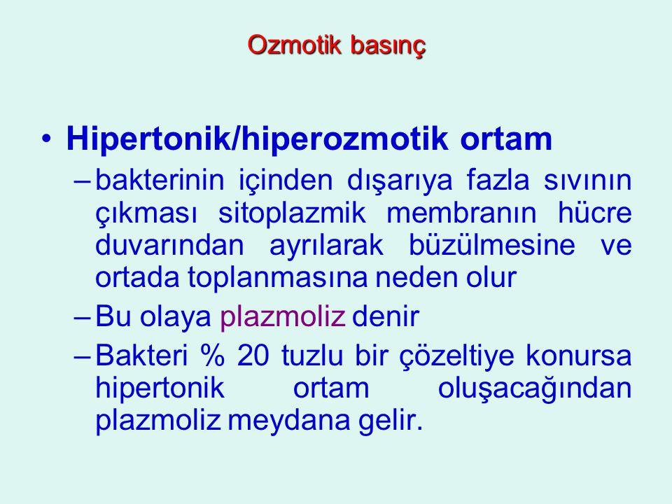 Hipertonik/hiperozmotik ortam –bakterinin içinden dışarıya fazla sıvının çıkması sitoplazmik membranın hücre duvarından ayrılarak büzülmesine ve ortad