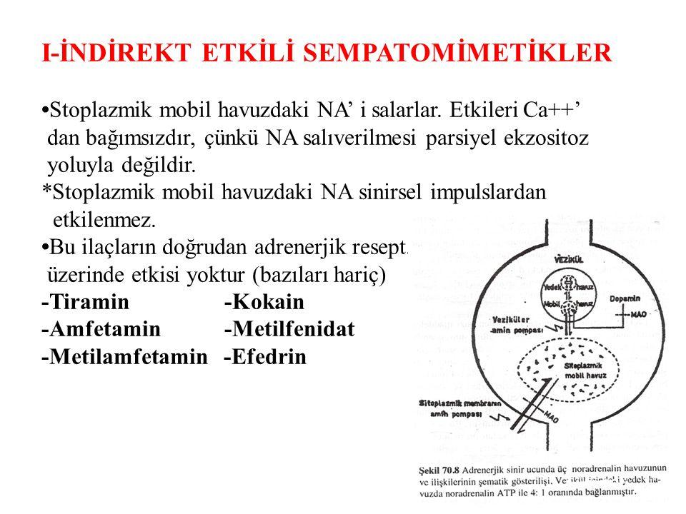 Amfetamin Periferde aderenerjik sinir uçlarından  NA Beyinde dopaminerjik sinir uçlarından  dopamin salgılanmasını ↑ *Ayrıca NA ve dopamin'in re-uptake' ini de inhibe eder  ve  res üzerinde agonistik etkisi vardır Ayrıca güçlü SSS uyarıcı ve iştah kesici etkileri vardır (dopamine bağlı) Tiramin Stoplazmik mobil havuzdan NA salıverir Bir ilaç değildir, peynir ve şarap gibi fermentasyona uğramış gıdalarda bulunmaktadır.