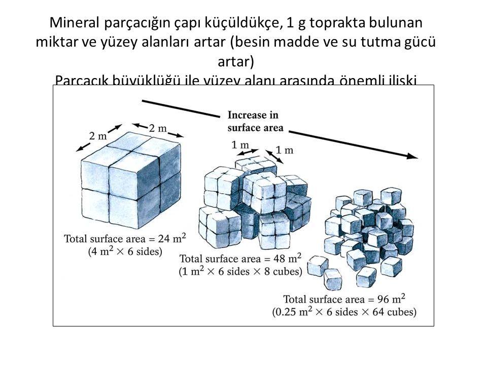 Mineral parçacığın çapı küçüldükçe, 1 g toprakta bulunan miktar ve yüzey alanları artar (besin madde ve su tutma gücü artar) Parçacık büyüklüğü ile yüzey alanı arasında önemli ilişki