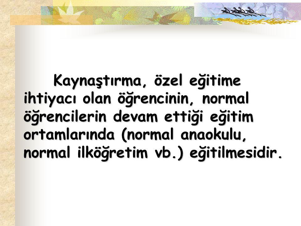 ÖZEL EĞİTİM DESTEK HİZMETLERİ NELERDİR.