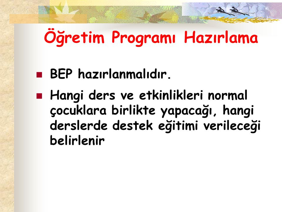 Öğretim Programı Hazırlama BEP hazırlanmalıdır.