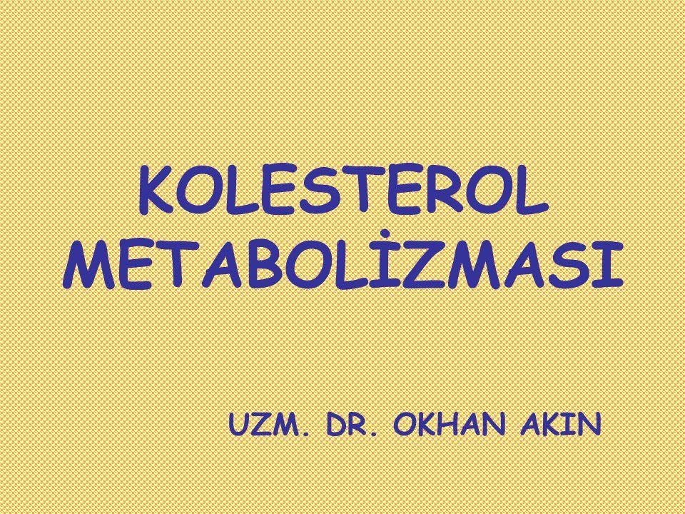 KOLESTEROL VE STEROİD METABOLİZMASI Kolesterol amfipatik bir lipiddir Kolesterol esterleri kolesterolün çoğu dokudaki depo halidir.