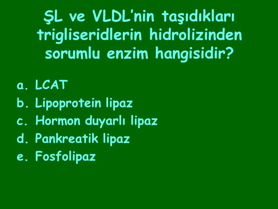 ŞL ve VLDL'nin taşıdıkları trigliseridlerin hidrolizinden sorumlu enzim hangisidir? a.LCAT b.Lipoprotein lipaz c.Hormon duyarlı lipaz d.Pankreatik lip