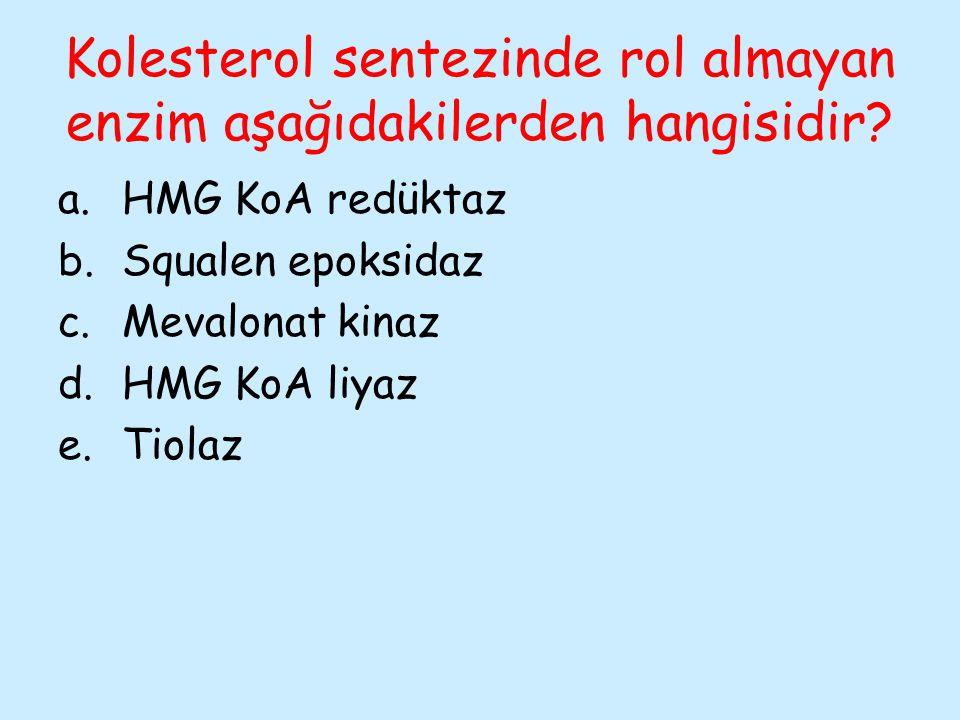 Kolesterol sentezinde rol almayan enzim aşağıdakilerden hangisidir? a.HMG KoA redüktaz b.Squalen epoksidaz c.Mevalonat kinaz d.HMG KoA liyaz e.Tiolaz