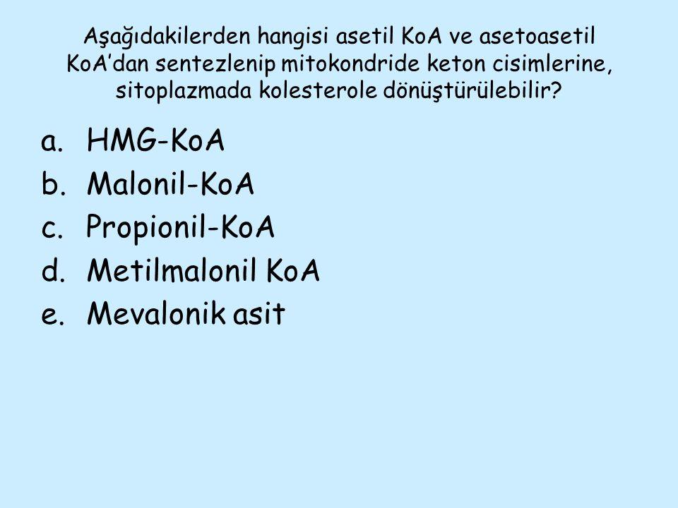 Aşağıdakilerden hangisi asetil KoA ve asetoasetil KoA'dan sentezlenip mitokondride keton cisimlerine, sitoplazmada kolesterole dönüştürülebilir? a.HMG