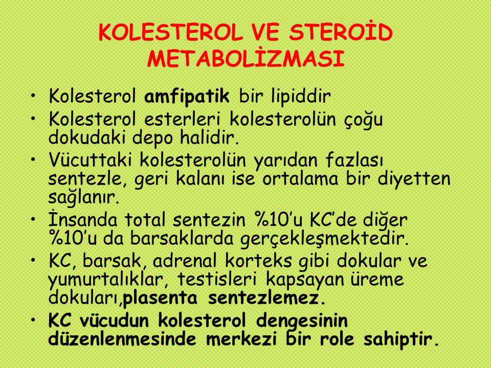 KOLESTEROL VE STEROİD METABOLİZMASI Kolesterol amfipatik bir lipiddir Kolesterol esterleri kolesterolün çoğu dokudaki depo halidir. Vücuttaki kolester