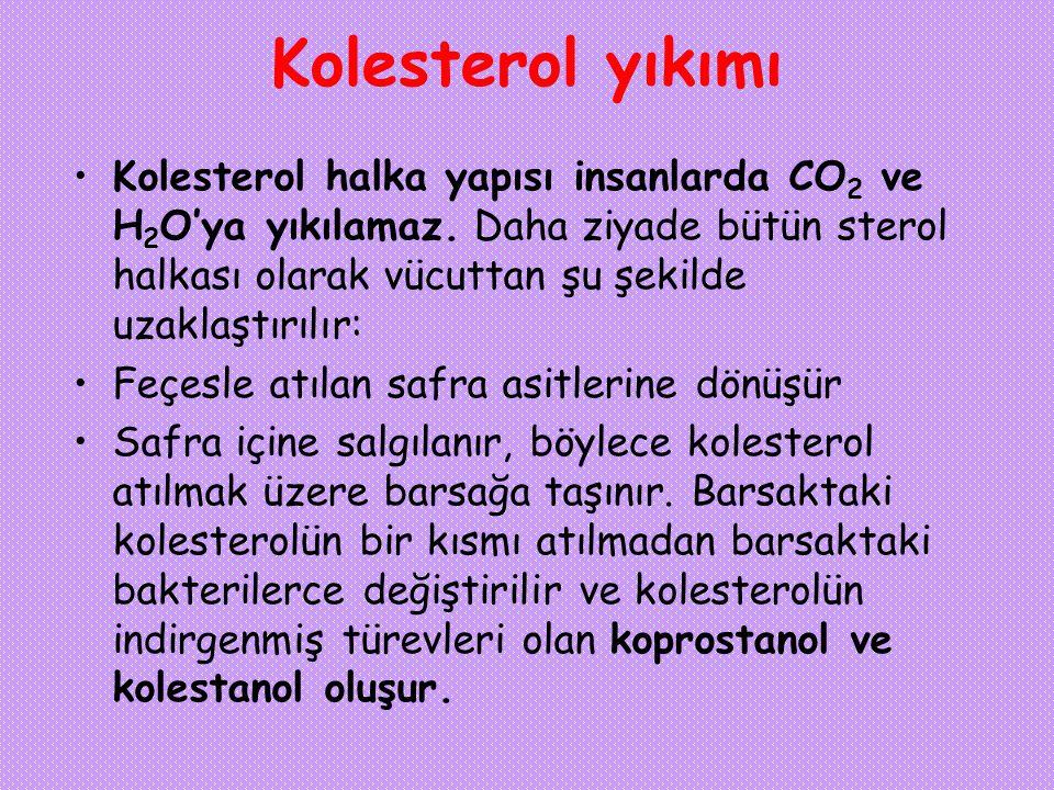 Kolesterol yıkımı Kolesterol halka yapısı insanlarda CO 2 ve H 2 O'ya yıkılamaz. Daha ziyade bütün sterol halkası olarak vücuttan şu şekilde uzaklaştı
