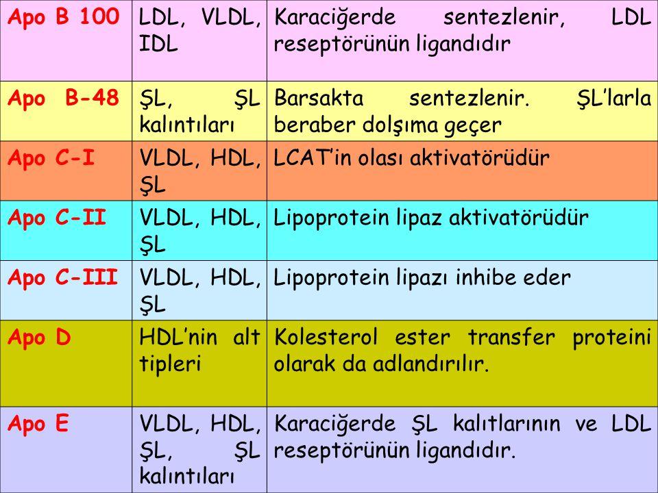 Apo B 100LDL, VLDL, IDL Karaciğerde sentezlenir, LDL reseptörünün ligandıdır Apo B-48ŞL, ŞL kalıntıları Barsakta sentezlenir. ŞL'larla beraber dolşıma