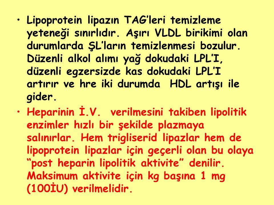 Lipoprotein lipazın TAG'leri temizleme yeteneği sınırlıdır. Aşırı VLDL birikimi olan durumlarda ŞL'ların temizlenmesi bozulur. Düzenli alkol alımı yağ