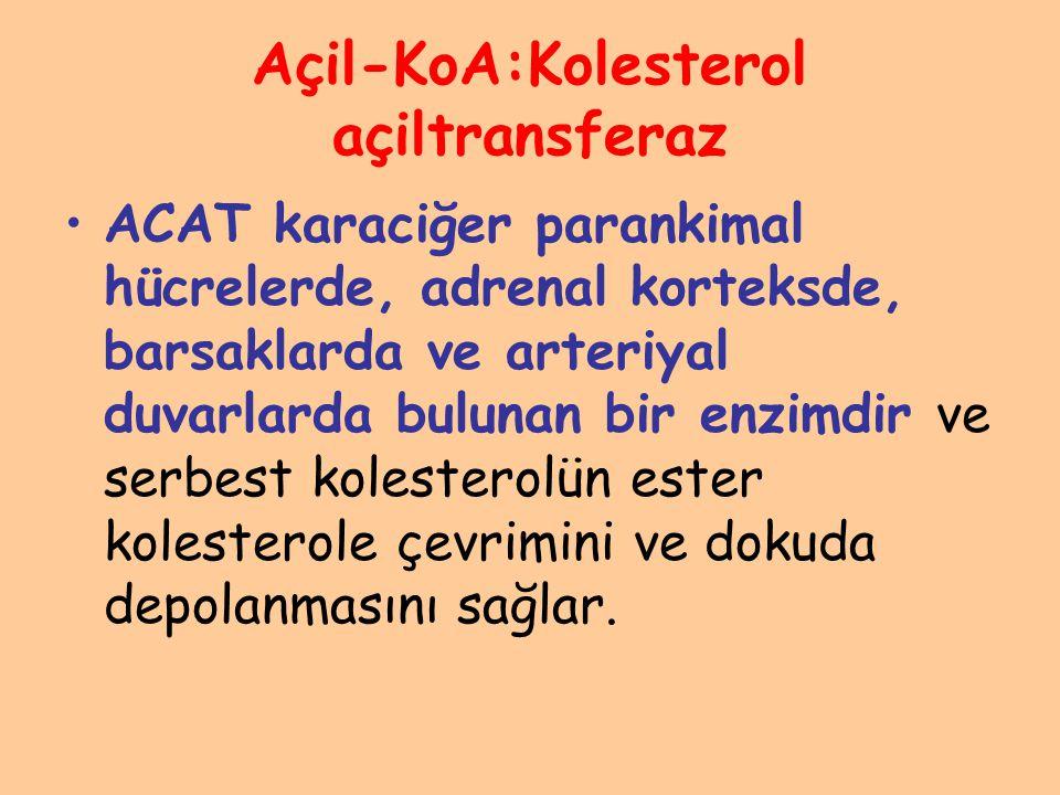 Açil-KoA:Kolesterol açiltransferaz ACAT karaciğer parankimal hücrelerde, adrenal korteksde, barsaklarda ve arteriyal duvarlarda bulunan bir enzimdir v