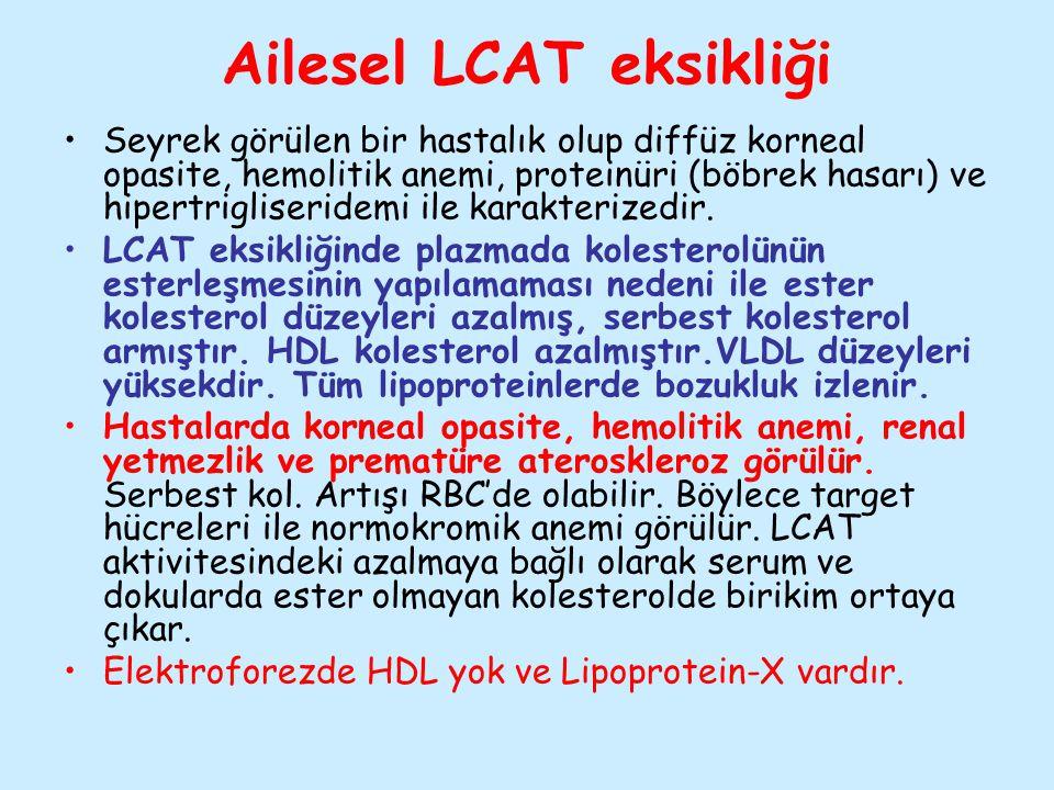 Ailesel LCAT eksikliği Seyrek görülen bir hastalık olup diffüz korneal opasite, hemolitik anemi, proteinüri (böbrek hasarı) ve hipertrigliseridemi ile