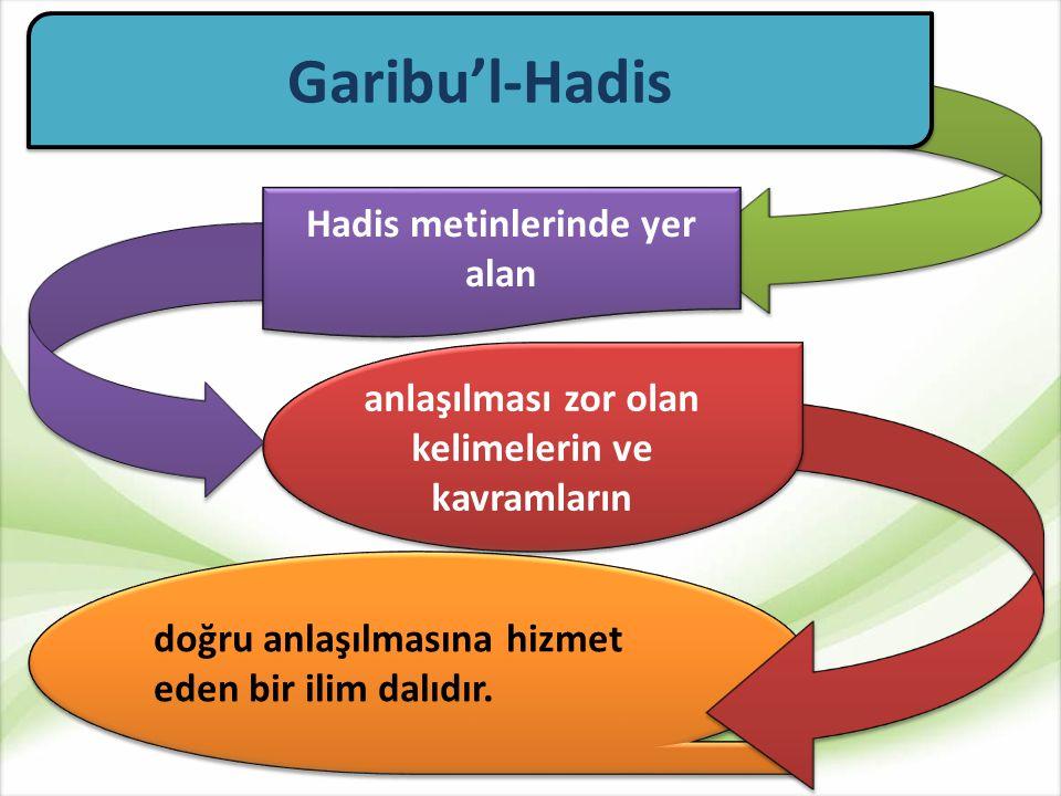 Esbâbu Vurudi'l- Hadis Esbâbu Vurudi'l- Hadis Fıkhu'l- Hadis Garibu'l-Hadis Muhtelifu'l- Hadis Muhtelifu'l- Hadis Sünnet ve Hadisin Anlaşılmasını Konu