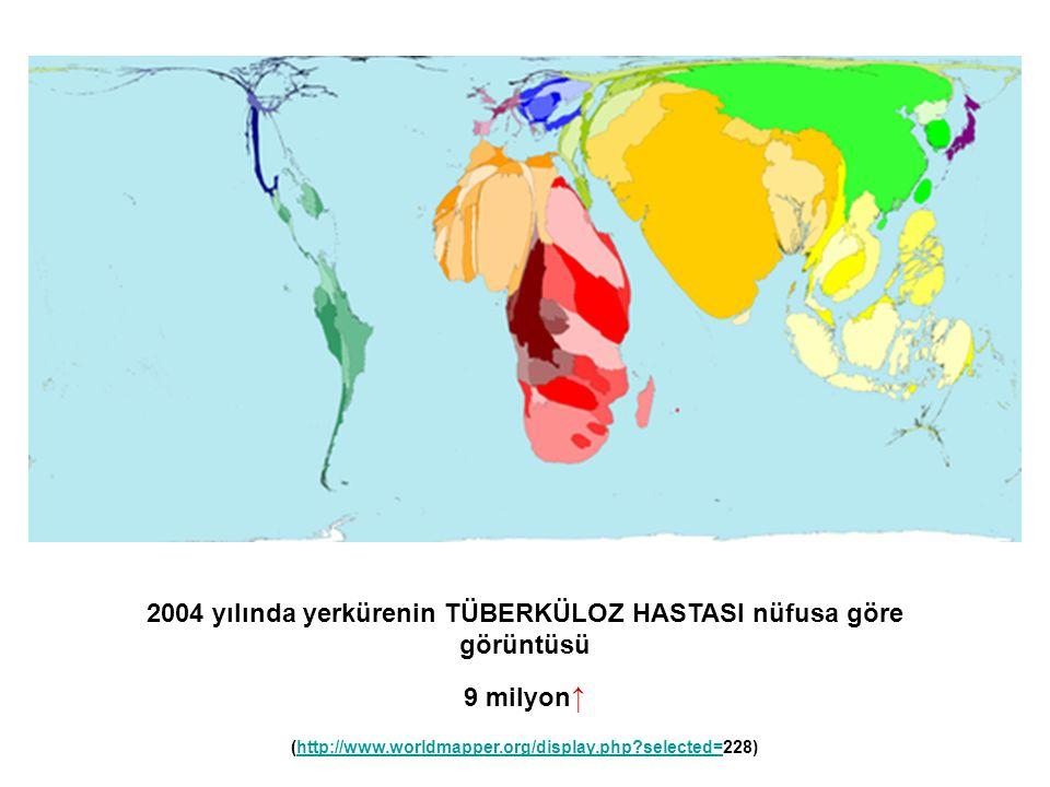 2004 yılında yerkürenin TÜBERKÜLOZ HASTASI nüfusa göre görüntüsü 9 milyon ↑ (http://www.worldmapper.org/display.php?selected=228)http://www.worldmappe