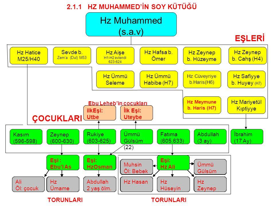 Hz Hatice M25/H40 Sevde b.Zem'a (Dul) M53 Hz Aişe H1-H2 evlendi 623-624 Hz Hafsa b.