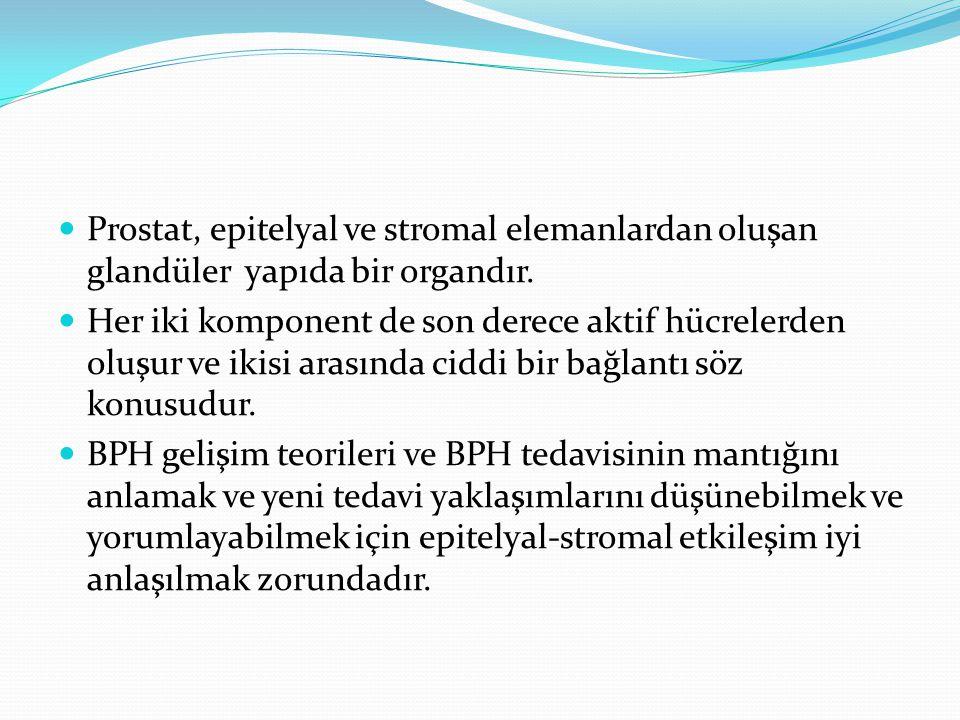 Benign Prostat Hiperplazisinde Kullanılan Stentler İlk kez 1980'lerde üroloji pratiğine giren prostatik stentler; migrasyon, enkrustasyon ve sık üriner enfeksiyon gibi komplikasyonları nedeniyle ürologlar arasında pek rağbet görmemiştir.