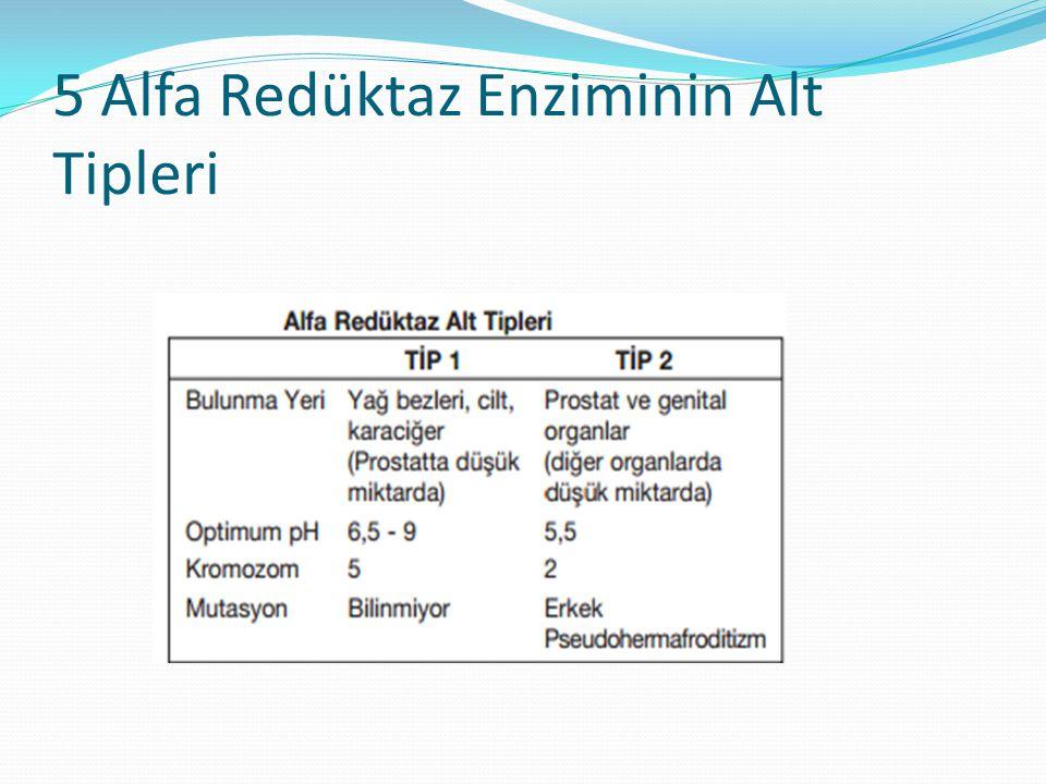 5 Alfa Redüktaz Enziminin Alt Tipleri
