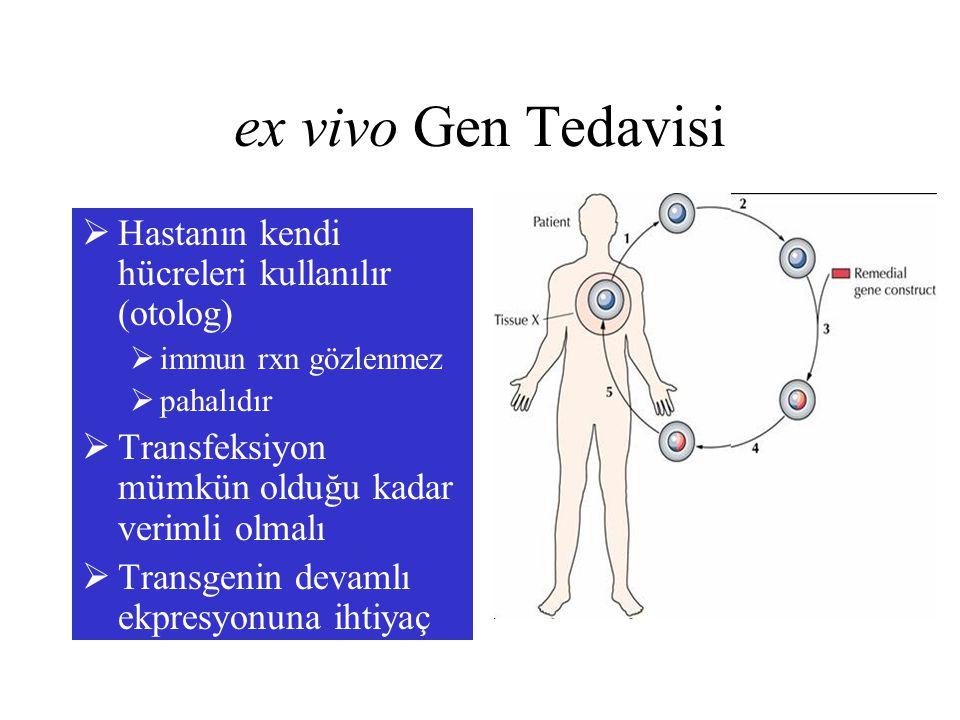 ex vivo Gen Tedavisi  Hastanın kendi hücreleri kullanılır (otolog)  immun rxn gözlenmez  pahalıdır  Transfeksiyon mümkün olduğu kadar verimli olma
