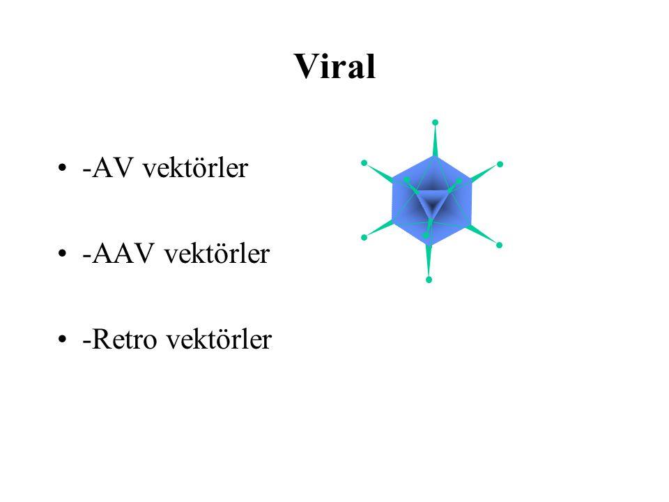 Viral -AV vektörler -AAV vektörler -Retro vektörler
