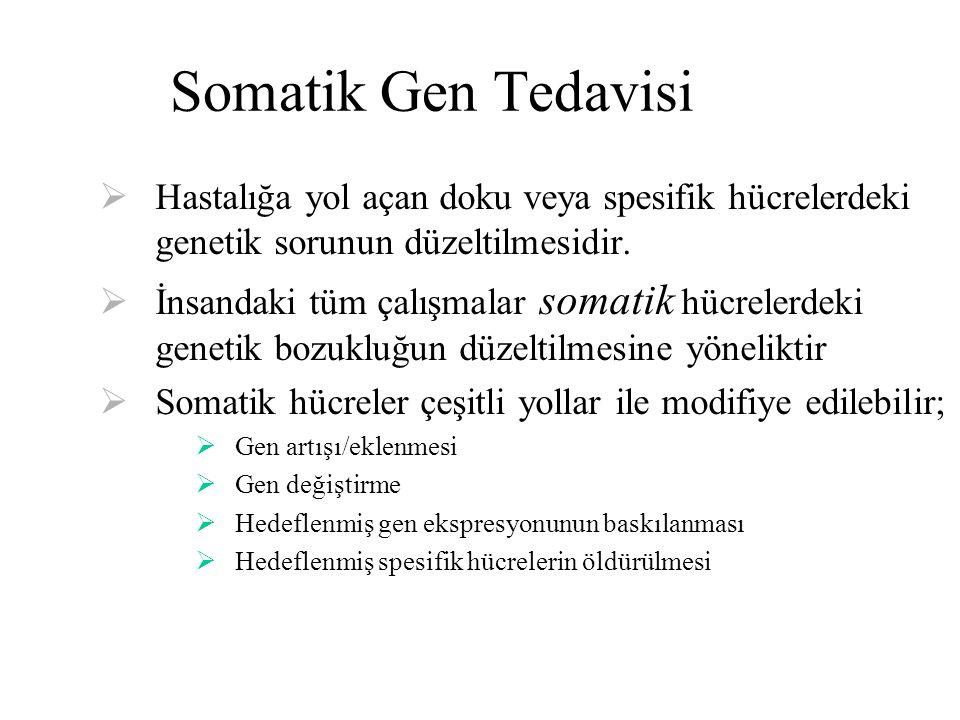 Somatik Gen Tedavisi  Hastalığa yol açan doku veya spesifik hücrelerdeki genetik sorunun düzeltilmesidir.  İnsandaki tüm çalışmalar somatik hücreler