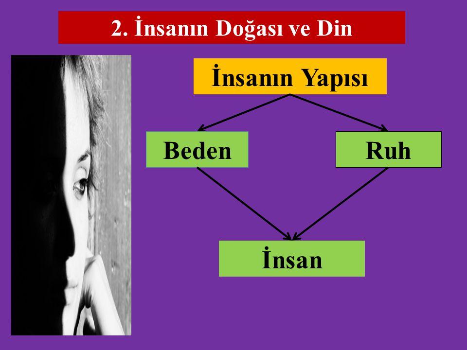 2. İnsanın Doğası ve Din İnsanın Yapısı RuhBeden İnsan
