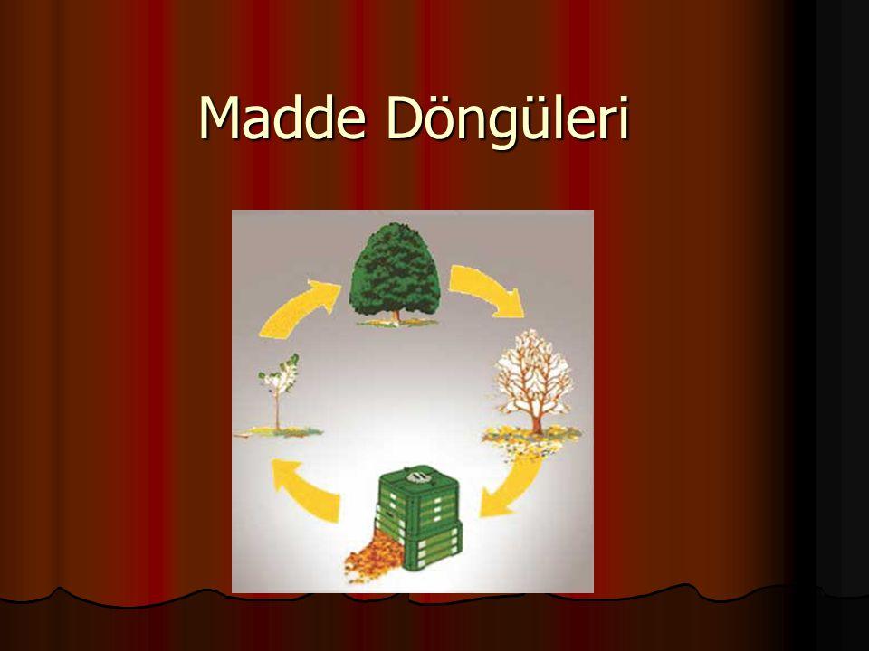 Madde Döngüleri Ve Özellikleri Ekosistem birbirleri ile ilişkili olan canlı ve cansız varlıklardan oluşmuştur.