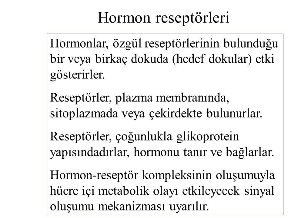 Hormon reseptörleri Hormonlar, özgül reseptörlerinin bulunduğu bir veya birkaç dokuda (hedef dokular) etki gösterirler. Reseptörler, plazma membranınd