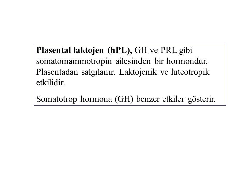 Plasental laktojen (hPL), GH ve PRL gibi somatomammotropin ailesinden bir hormondur. Plasentadan salgılanır. Laktojenik ve luteotropik etkilidir. Soma