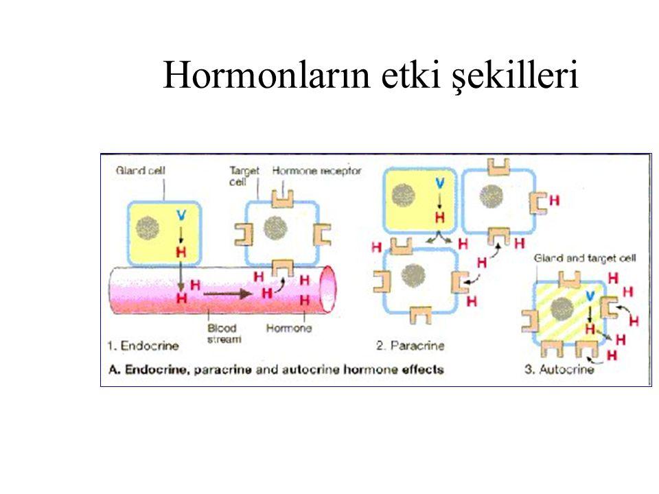 Hormonların etki şekilleri