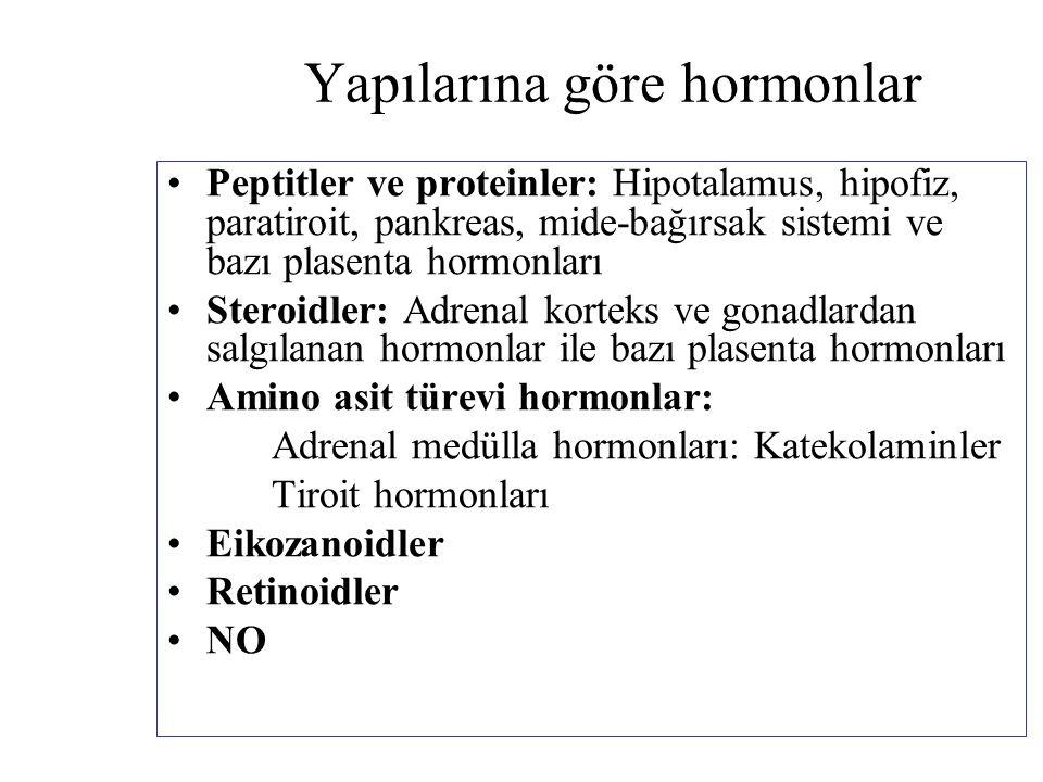 Yapılarına göre hormonlar Peptitler ve proteinler: Hipotalamus, hipofiz, paratiroit, pankreas, mide-bağırsak sistemi ve bazı plasenta hormonları Stero