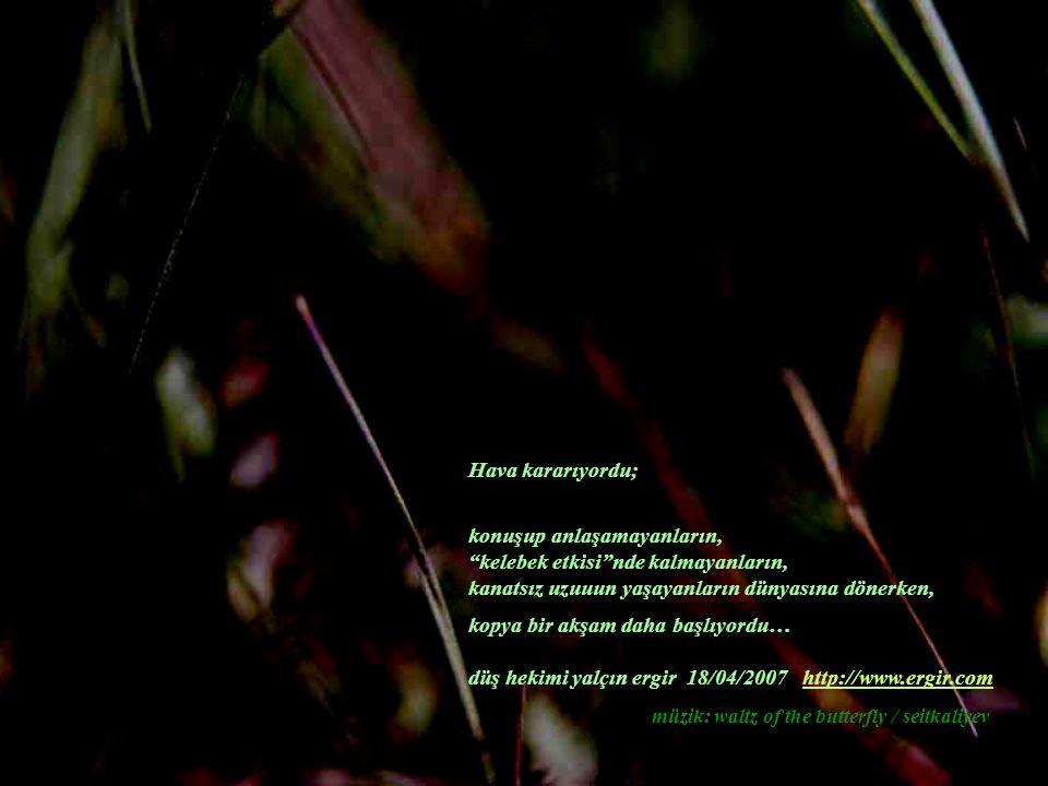 konuşup anlaşamayanların, kelebek etkisi nde kalmayanların, kanatsız uzuuun yaşayanların dünyasına dönerken, kopya bir akşam daha başlıyordu… düş hekimi yalçın ergir 18/04/2007 http://www.ergir.comhttp://www.ergir.com müzik: waltz of the butterfly / seitkaliyev Hava kararıyordu;