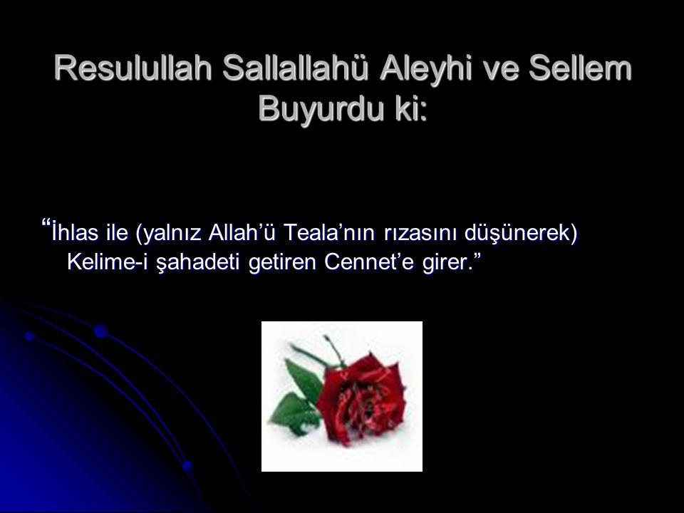 Resulullah Sallallahü Aleyhi ve Sellem Buyurdu ki: İhlas ile (yalnız Allah'ü Teala'nın rızasını düşünerek) Kelime-i şahadeti getiren Cennet'e girer.