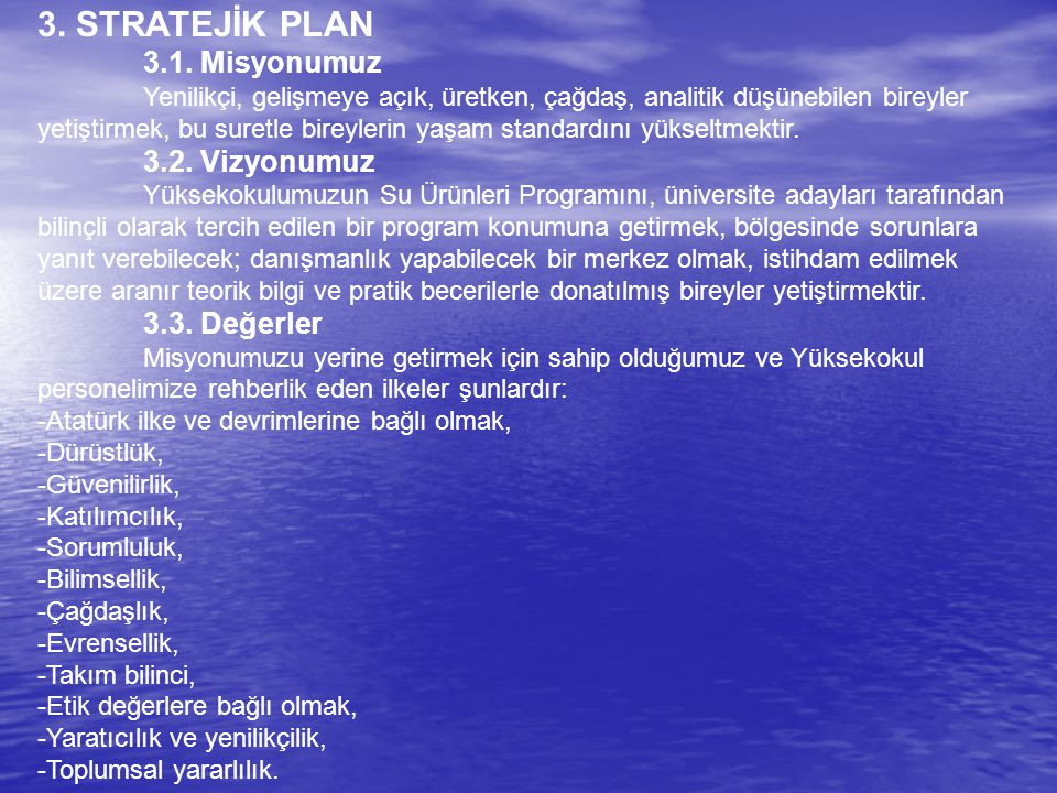 3. STRATEJİK PLAN 3.1.