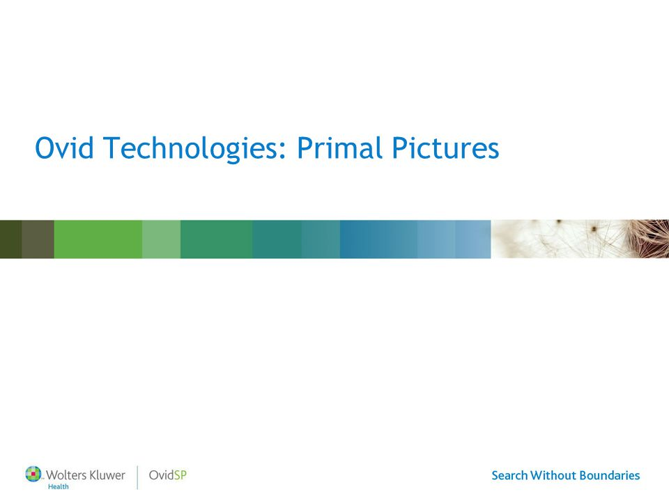 Ovid Technologies: Primal Pictures