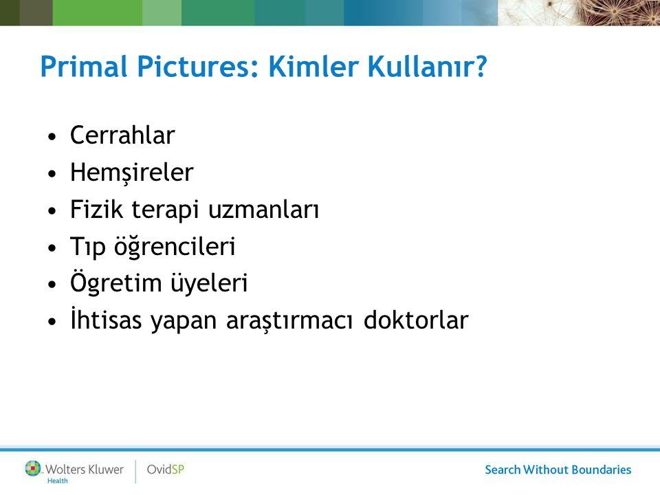 Primal Pictures: Kimler Kullanır? Cerrahlar Hemşireler Fizik terapi uzmanları Tıp öğrencileri Ögretim üyeleri İhtisas yapan araştırmacı doktorlar