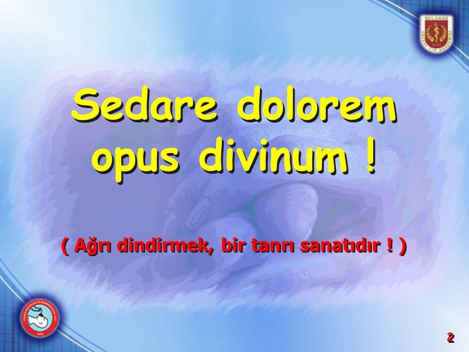 2 Sedare dolorem opus divinum ! Sedare dolorem opus divinum ! ( Ağrı dindirmek, bir tanrı sanatıdır ! ) ( Ağrı dindirmek, bir tanrı sanatıdır ! )