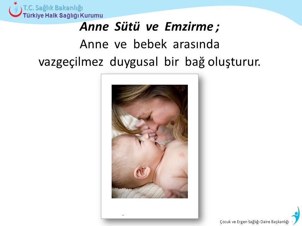 İstatistik ve Bilgi İşlem Daire Başkanlığı Türkiye Halk Sağlığı Kurumu T.C. Sağlık Bakanlığı Çocuk ve Ergen Sağlığı Daire Başkanlığı Anne Sütü ve Emzi