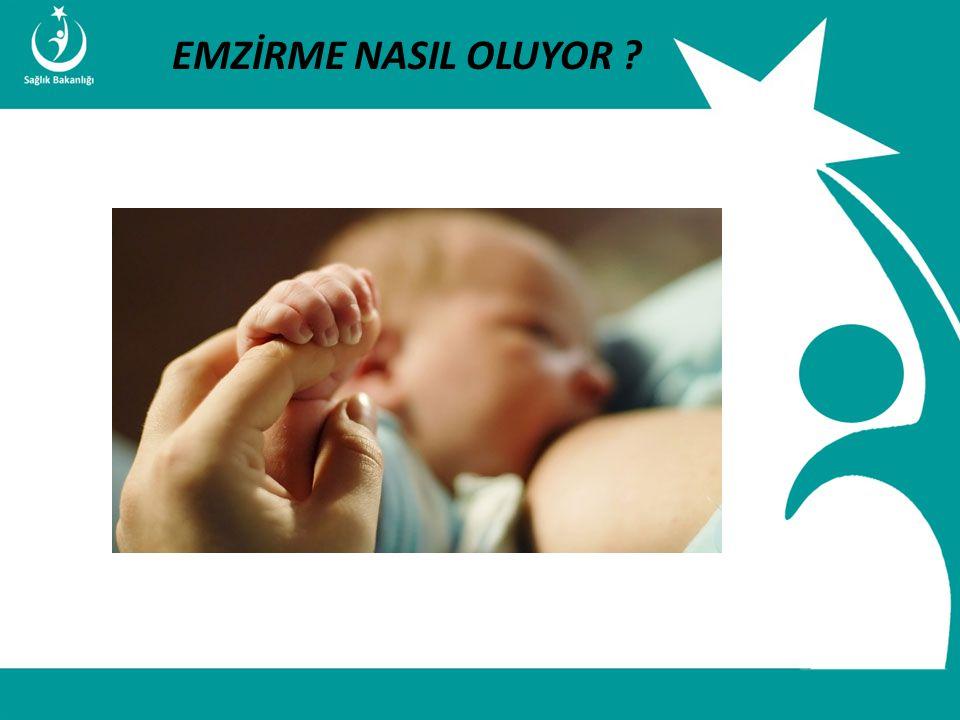 İstatistik ve Bilgi İşlem Daire Başkanlığı Türkiye Halk Sağlığı Kurumu T.C. Sağlık Bakanlığı Çocuk ve Ergen Sağlığı Daire Başkanlığı EMZİRME NASIL OLU
