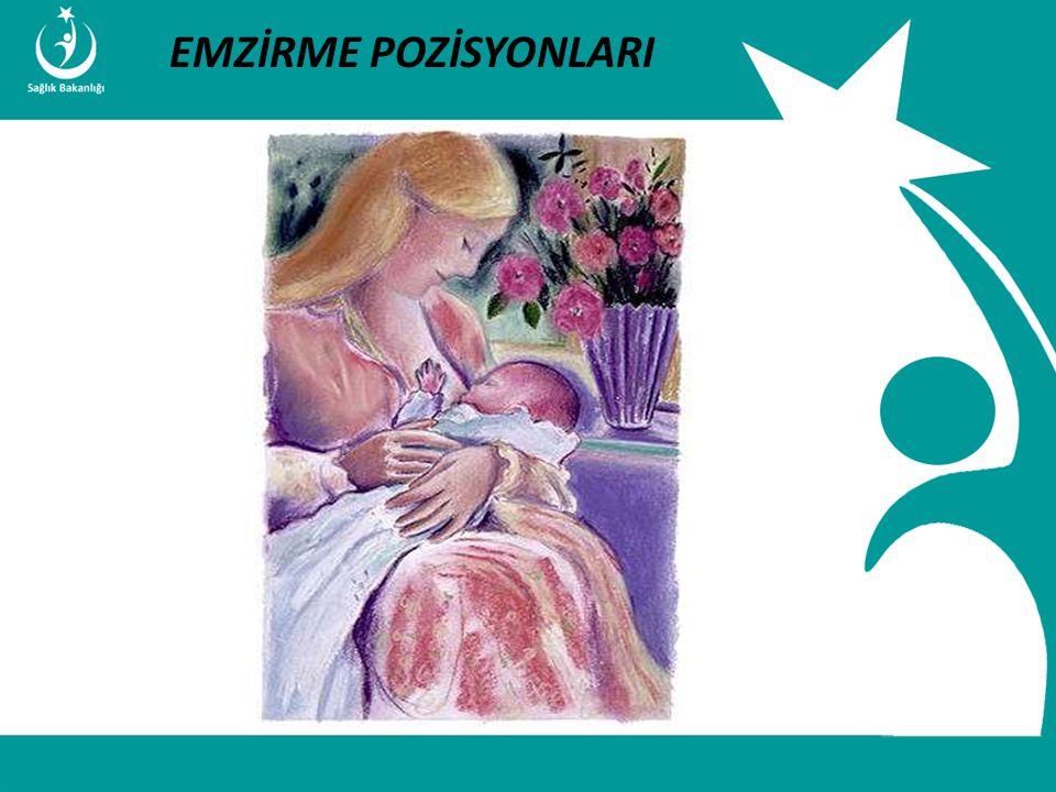 İstatistik ve Bilgi İşlem Daire Başkanlığı Türkiye Halk Sağlığı Kurumu T.C. Sağlık Bakanlığı Çocuk ve Ergen Sağlığı Daire Başkanlığı EMZİRME POZİSYONL
