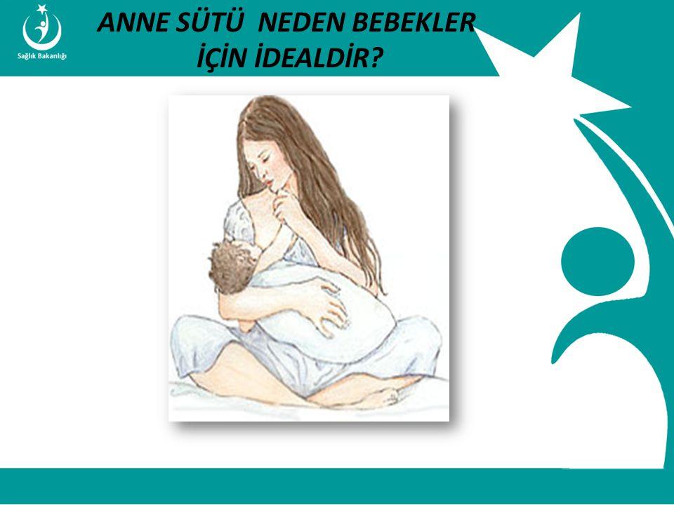 İstatistik ve Bilgi İşlem Daire Başkanlığı Türkiye Halk Sağlığı Kurumu T.C. Sağlık Bakanlığı Çocuk ve Ergen Sağlığı Daire Başkanlığı ANNE SÜTÜ NEDEN B